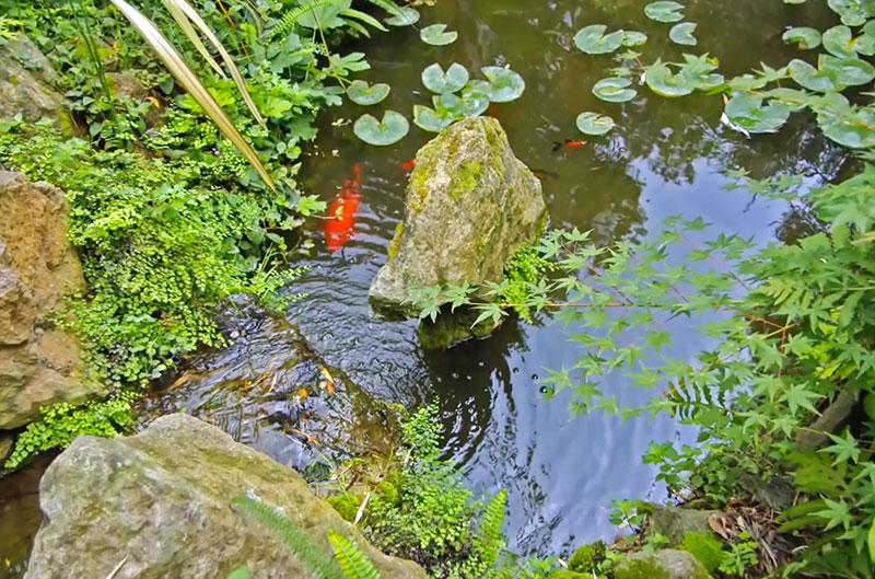 Сад Ла Мортелла на Искья